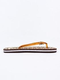 Women Brown & Beige Comfort Flip Flop