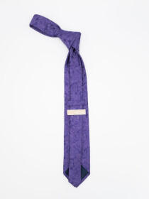 Classic Paisley Microfibre polyester Tie