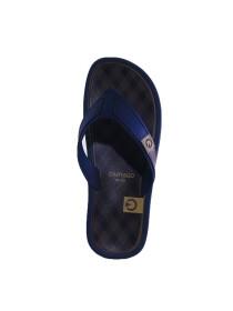 Cartago Brown Blue Slipper for Men