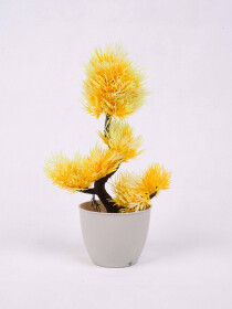 Yellow Willow Topiary Plant