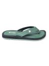 Green FlipFlop -AA29M