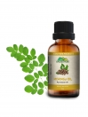 Moringa Carrier Oils