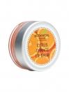 Citrus Orange Lip Balm