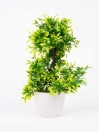 Green Willow Topiary Plant